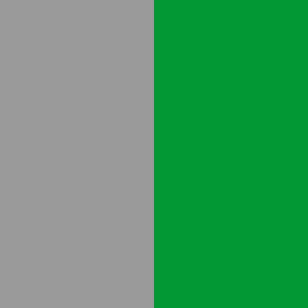 серый/зеленый_999999/009933