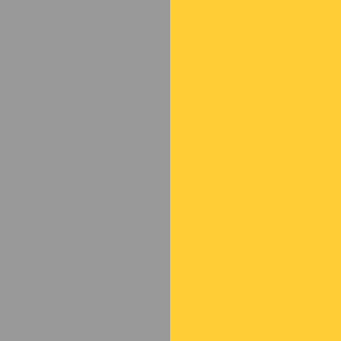 серый/желтый_999999/FFCC33