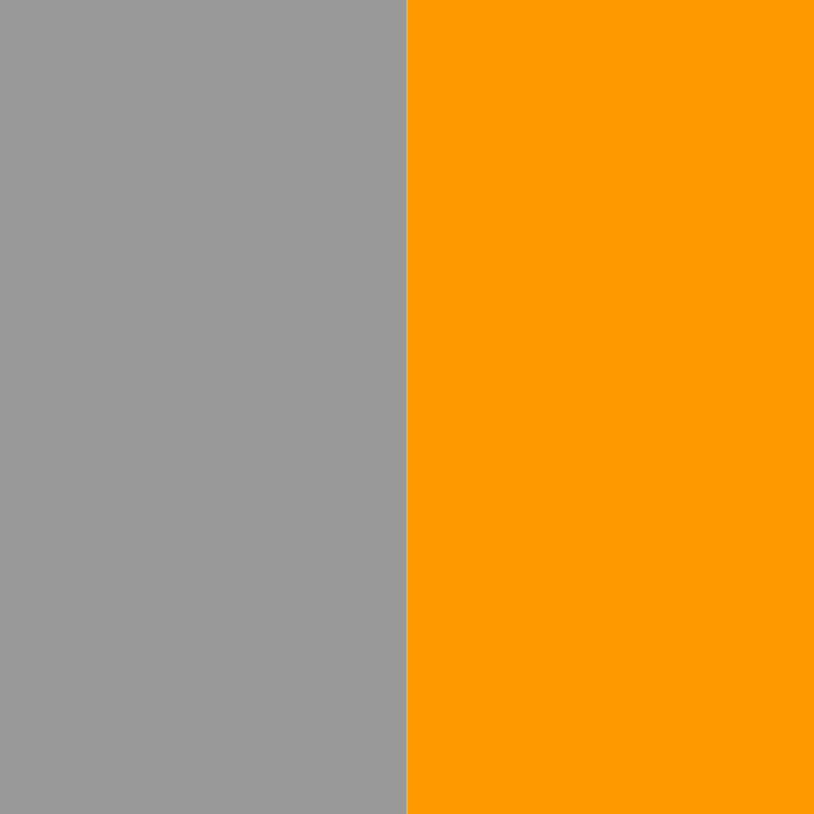 серый/оранжевый_999999/FF9900